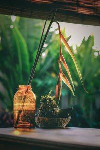florero bambú