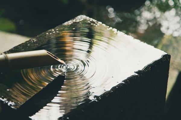 fuente con bambu