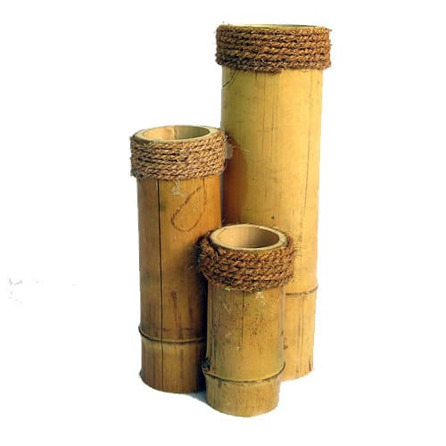 jarron bambu